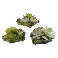 Растение искусственное Decoris «Суккулент», 12х16х6