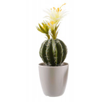 Цветок искусственный Decoris «Кактус цветущий» в пластиковом
