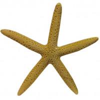 Декорация для аквариумов MEIJING AQUARIUM Морская звезда