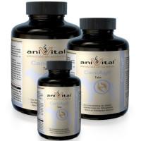 Витаминный комплекс AniVital CaniAgil для суставов собак,