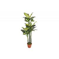 Искусственное растение Диффенбахия