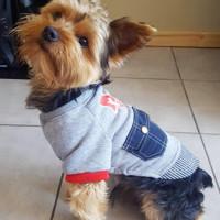 Теплая куртка пальто для собак мелких пород
