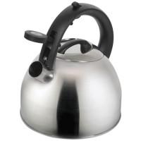 Чайник на плиту Polaris