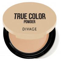 Divage Пудра Компактная Compact Powder True Color