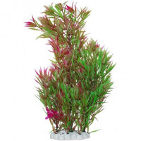 УЮТ Растение аквариумное Гетерантера зелено фиолетовая,