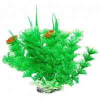 УЮТ Растение аквариумное Амбулия зеленая с кружевными