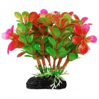УЮТ Растение аквариумное Бакопа зелено розовая