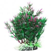 УЮТ Растение аквариумное Гетерантера зелено филетовая