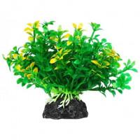УЮТ Растение аквариумное Микрантемум зелено желтый