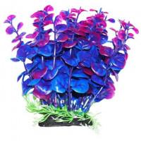 УЮТ Растение аквариумное Бакопа сине фиолетовая