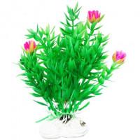 УЮТ Растение аквариумное Гемиантус с розовыми цветами