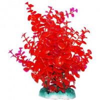 УЮТ Растение аквариумное Бакопа красная, 20 см