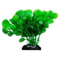 УЮТ Растение аквариумное Дианея зеленая