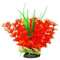 УЮТ Растение аквариумное Амбулия оранжевая с кружевными