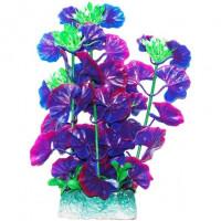 УЮТ Растение аквариумное Щитолистник зелено фиолетовый,