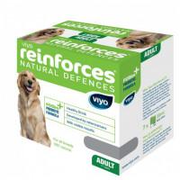 Viyo Adult Dog Пребиотический напиток для взрослых собак,