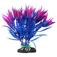 УЮТ Растение аквариумное Гетерантера сине фиолетовая