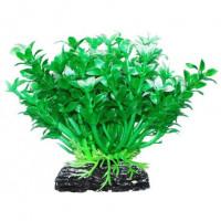 УЮТ Растение аквариумное Микрантемум зелено белый