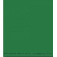 Эмаль аэрозольная Bosny зеленая трава глянцевая