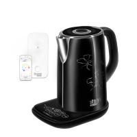 Умный чайник REDMOND SkyKettle M170S E+Центр умного