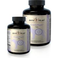 Пищевая добавка Anivital CaniAge Tabs для профилактики