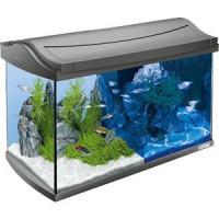Аквариумный комплекс Tetra AquaArt LED Discover Line Tropical