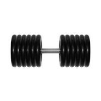 Гантель Original Fit Tools 81 кг черная